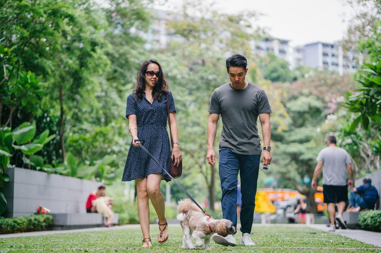 Grumpy Old Man – Walking Your Dog